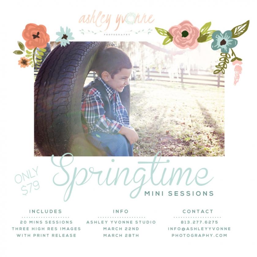 article invitation for 2015 for Springtime Mini Session